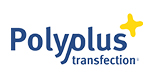 Polyplus transfection